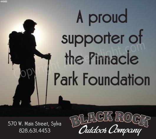 Blackrock Co. - Print Ad